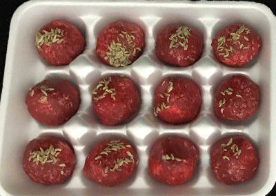 Replica Uncooked Meatballs