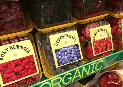 Replica Berry Container