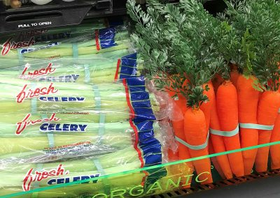 Replica Celery and Carrots